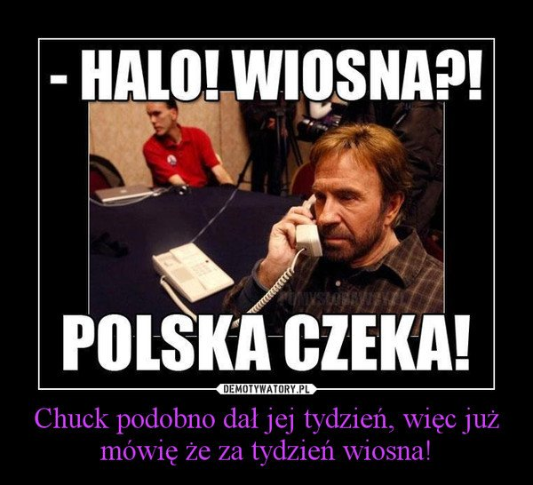 randki ze starszymi Gorzów Wielkopolski