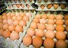 Gospodarka na talerzu: Wielkanocny konflikt jajeczny