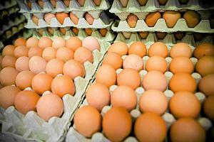 Tańsze jajka znikną ze sklepów w Polsce? Przełomowe decyzje dyskontów