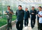 Kim Dżong Un kazał rozstrzelać dyrektora żółwiej farmy. Powód? Irytacja wodza