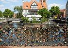 """Gdańsk walczy z kłódkami miłości. """"To elementy niebędące częścią właściwą mostu"""""""