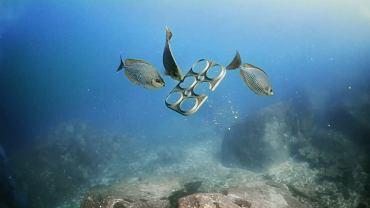 Plastikowe śmieci zanieczyszczają oceany