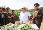 Na granicy wybuchają miny, ale Kim nie zmienia swoich planów. W dobrym nastroju ogląda farmę, dom starców, muzeum...