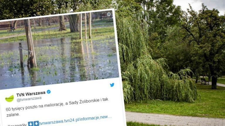 Podtopione Sady Żoliborskie