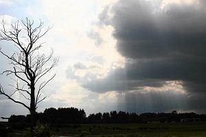 �roda pod znakiem chmur. Prognoza pogody