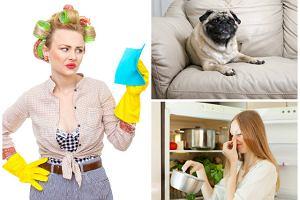 Wystarczająco Perfekcyjna Pani Domu: Jak zneutralizować brzydkie zapachy?