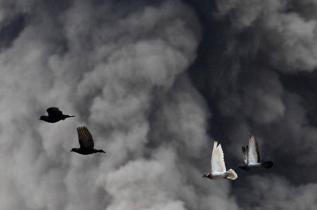 30 erupcji wulkanu Sinabung w Indonezji. 25 tys. os�b ewakuowanych [ZDJ�CIA]