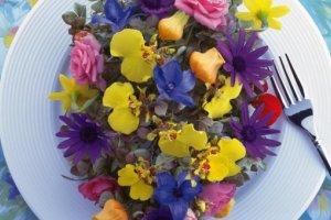 Jadalne kwiaty. Cisowianka. Gotujmy zdrowo - mniej soli