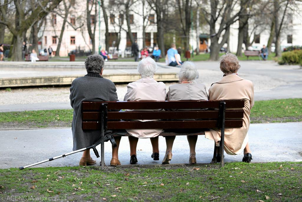 Starsze panie siedzą na ławce z parku