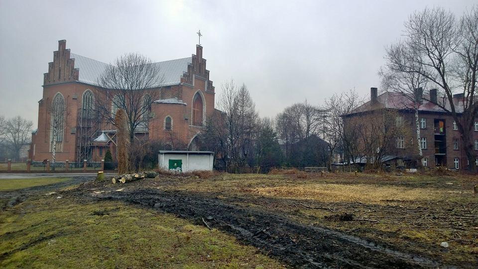 wycinka drzew przy kościele w sielcu powstanie tutaj