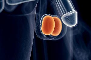 Ból jąder - przyczyny, objawy, leczenie
