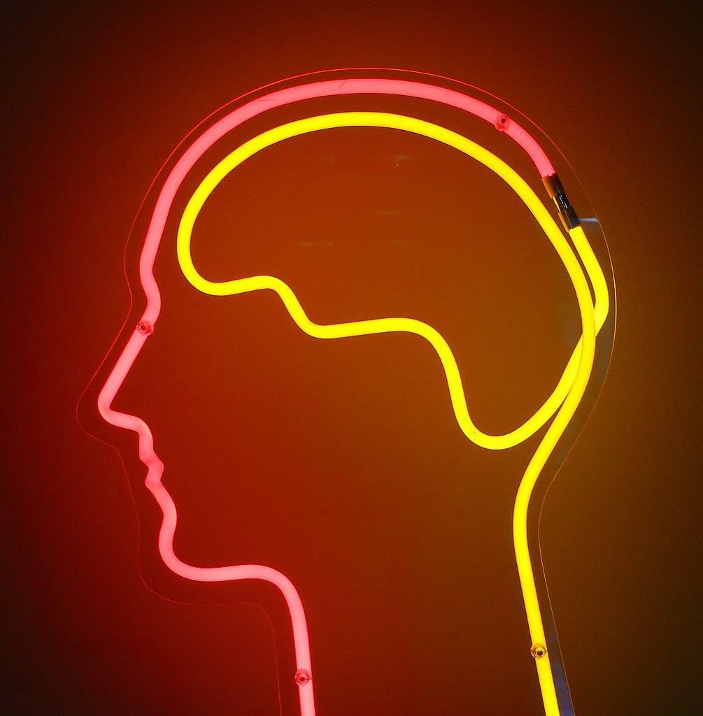 Hormony - podwzgórze i przysadka mózgowa odgrywają kluczową rolę w wytwarzaniu hormonów
