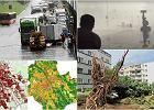 Mapy huraganów i podtopień. Warszawa szykuje się na gwałtowne zmiany klimatu. W których dzielnicach jest najgorzej?