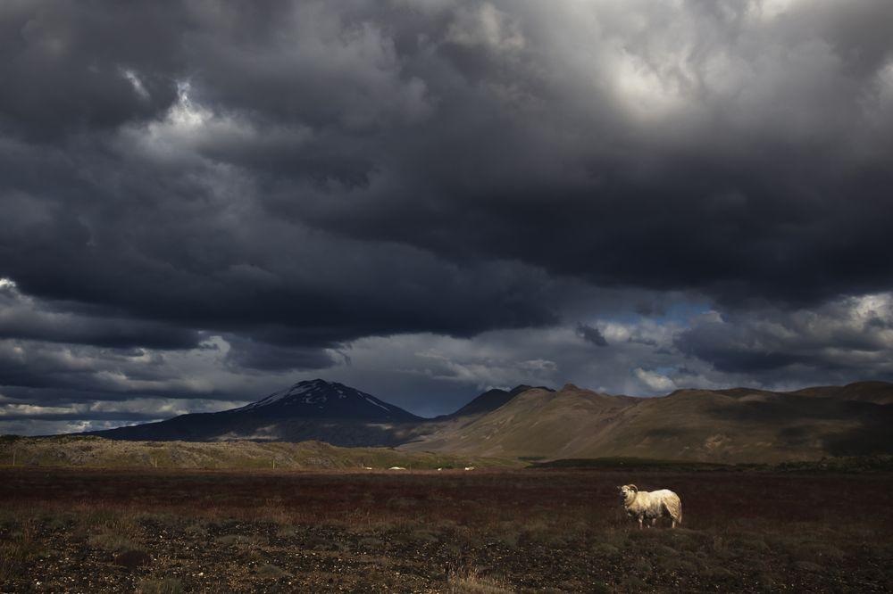 Hekla, Islandia / fot. Shutterstock