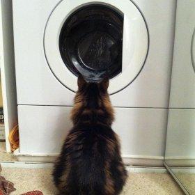 Jak wyczy�ci� filtr pralki -