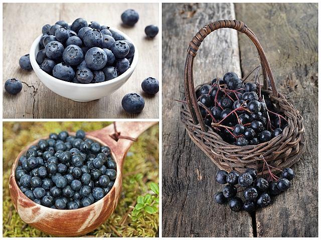 Granatowe jagody - dla mózgu, układu krwionośnego i zdrowego brzucha