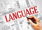 W dorosłość z certyfikatem językowym - polscy licealiści chętnie zdają egzaminy językowe