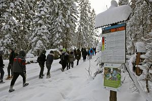 Zimowo w Tatrach, śnieg, 3. stopień zagrożenia lawinowego