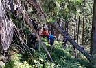 Tajemnica ludzkich szczątków w Tatrach. Znaleziono pozostałości obozowiska i monety
