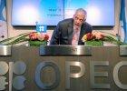 """OPEC: produkcja ropy w 2015 r. nie zmieni si� wiele. """"Nie trzeba si� martwi� o ceny surowca"""""""