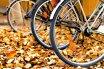Jesie� na rowerze. Pomys� na weekend