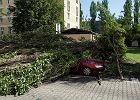 Nawet 200 tysięcy osób bez prądu, co najmniej 7 rannych. Gwałtowne burze wciąż nad Polską