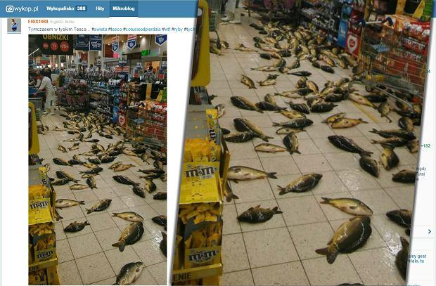 Kilkadziesiąt ŻYWYCH karpi na podłodze w Tesco. Mamy tłumaczenie sklepu