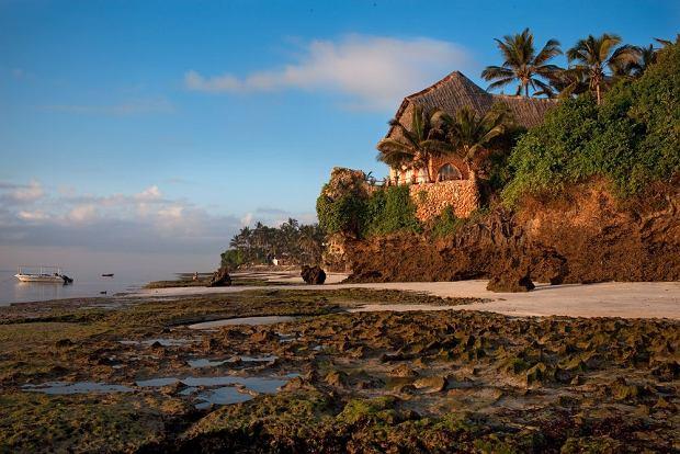 """Mówisz """"Kenia"""", myślisz """"safari"""" - a przecież to nie wszystko! Kenia to także rafa i białe plaże w cieniu palm i baobabów"""