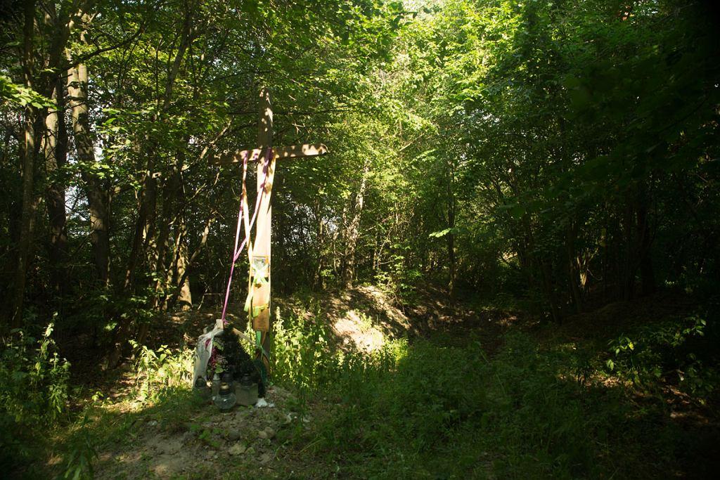 W miejscu masowego grobu mieszkańców wsi Gaj stoi krzyż. To jedyna pozostałość po tragedii (fot. Marcin Jończyk)
