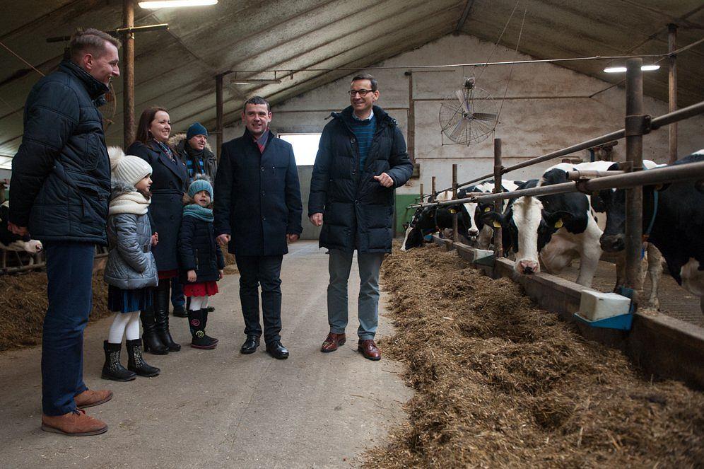 Mateusz Morawiecki z wizytą u mleczarzy