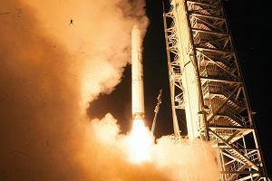 Zagadkowe zdj�cie NASA. �aba chcia�a polecie� w kosmos?
