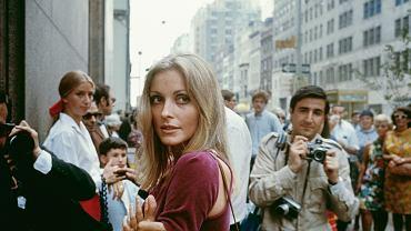 Sharon Tate na planie 'Dziecka Rosemary', pierwszego hollywoodzkiego filmu swojego męża Romana Polańskiego. Tym razem tylko wpadła w odwiedziny