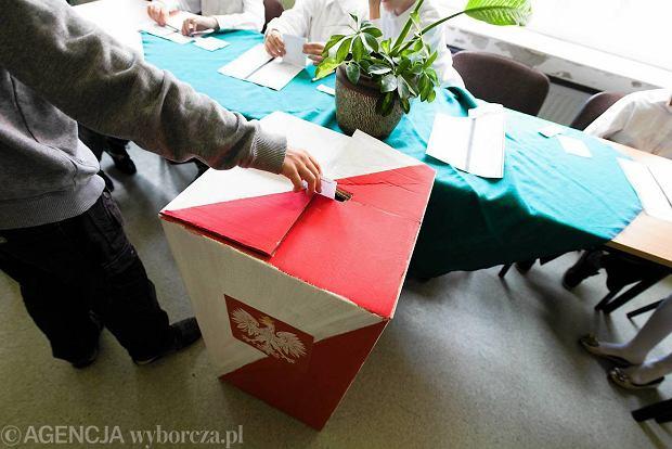 Na kogo głosowaliby kibice piłkarscy w Polsce? PiS i PO daleko, Kukiz'15 na czele