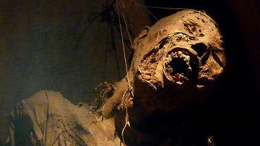 Muzeum Mumii, Guanajuato, Meksyk