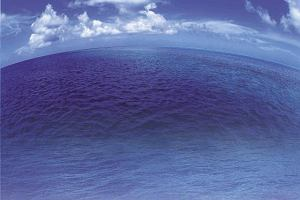 Wielkie oceaniczne ucho