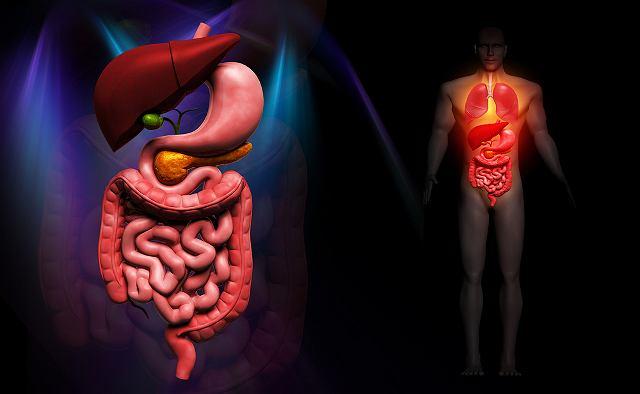 Achalazja przełyku spowodowana jest nieprawidłowym działaniem mięśnia dolnego zwieracza przełyku.