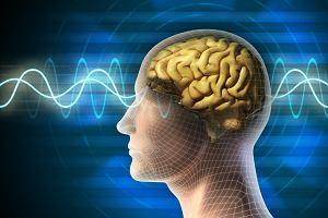 Czy udar mózgu to to samo co wylew krwi do mózgu?