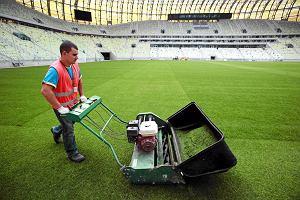 Euro 2012 Gda�sk. Dwie firmy w przetargu na wymian� murawy w Gda�sku. Koszt? 740 lub 691 tys. z�