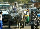 Delhi - brama do Indii