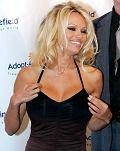 Tommy Lee i Pamela Anderson zn�w razem!