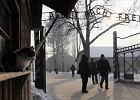 Tureccy studenci skazani za hajlowanie pod bram� w Auschwitz