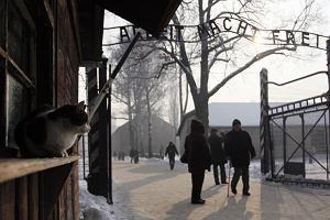 S�owacy hajlowali pod bram� obozu w Auschwitz?
