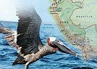 Listy z ameryki część II - Peru i Ekwador