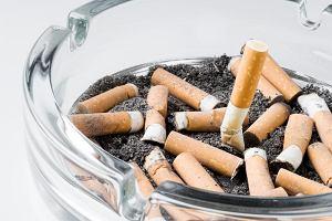 Palenie przyczyn� kurczenia si� m�zgu