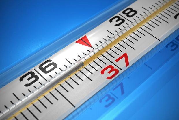 Dlaczego temperatura cia�a wynosi 36,6 stopni Celsjusza