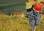 Włochy. Toskania i Wenecja - największe atrakcje