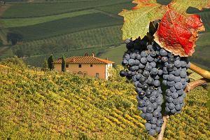 W�ochy. Toskania i Wenecja - najwi�ksze atrakcje
