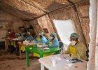 Epidemia eboli: pacjentem zero najpewniej było dwuletnie dziecko z Gwinei