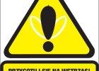 Tydzie� Alergii dla mieszka�c�w Warszawy (13-16 kwietnia)