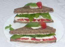 Sandwicze z mozzarellą - ugotuj